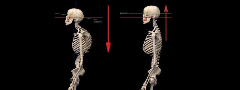 mal schiena cronico metodo